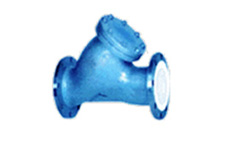 PTFE Lined Strainers
